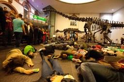 Extinction Rebellion veranstaltete Die In