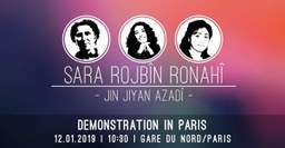 Großdemonstration in Paris