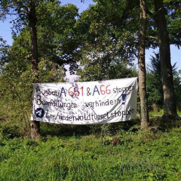 riederwald_banner.jpg